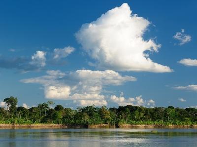 Respira Amazonas
